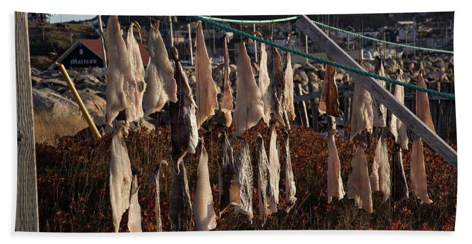 Bonavista Bath Sheet featuring the photograph Drying Pieces Of Salt Cod In Bonavista, Nl, Canada by Karen Foley