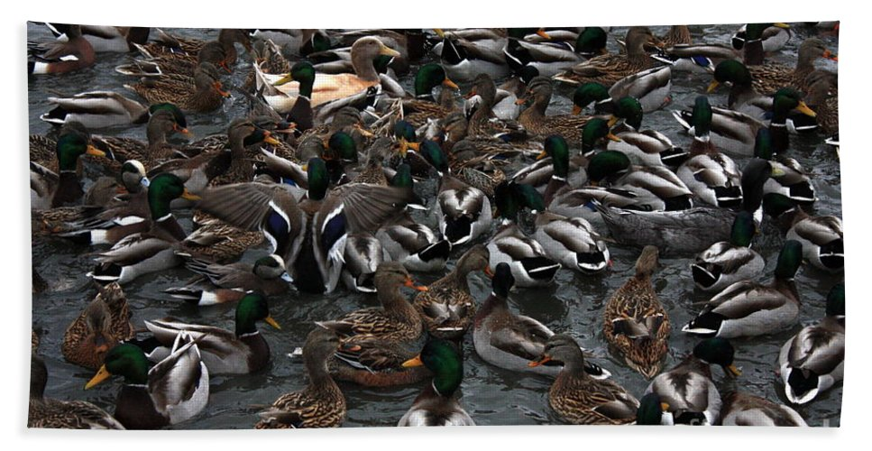 Duck Hand Towel featuring the photograph Duck Soup by Carol Groenen