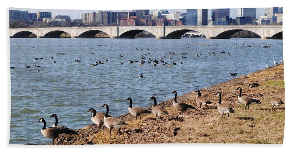 Washington Bath Sheet featuring the photograph Ducks Of The Potomac by Jost Houk