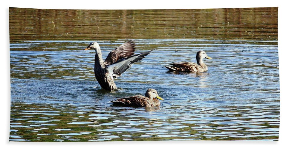 Ducks Hand Towel featuring the photograph Ducks On Colorful Pond by Carol Groenen