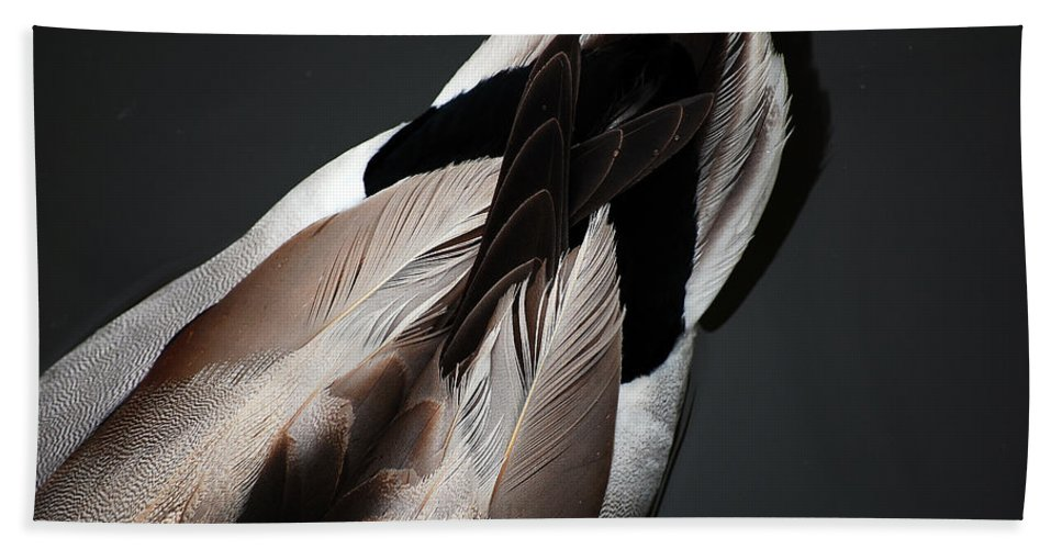Duck Hand Towel featuring the photograph Ducktail by Robert Meanor