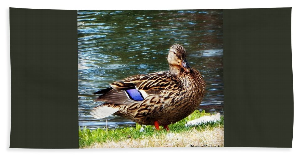 Duck Hand Towel featuring the photograph Ducky Day by Bobbee Rickard