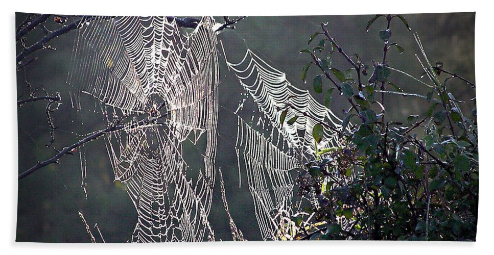 2d Bath Sheet featuring the photograph Dueling Webs by Brian Wallace