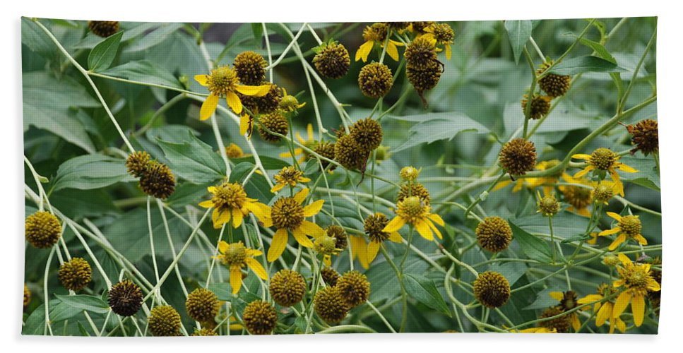 Macro Bath Towel featuring the photograph Dying Sun Flowers by Rob Hans