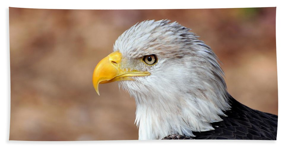 Eagle Bath Sheet featuring the photograph Eagle 10 by Marty Koch