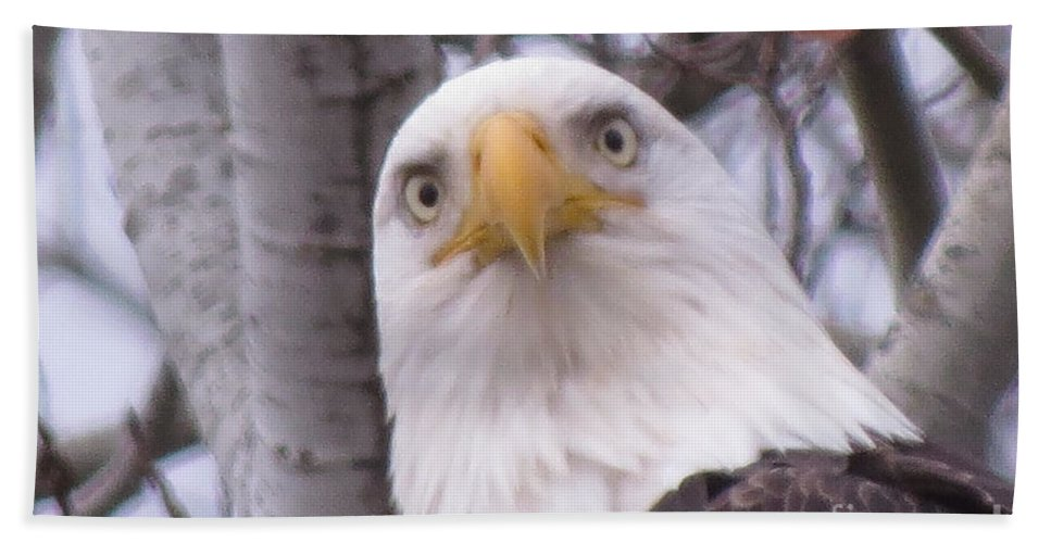 Photograph Bath Sheet featuring the photograph Eagle Eyes by Mary Mikawoz