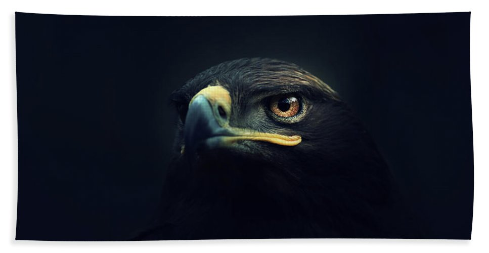 Animal Bath Towel featuring the photograph Eagle by Zoltan Toth