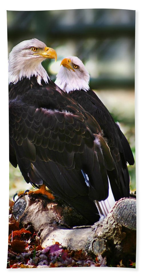 Eagles Hand Towel featuring the photograph Eagles by Anthony Jones