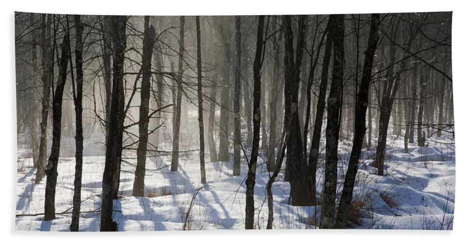 Fog Bath Towel featuring the photograph Early Morning Fog In A New Hampshire Forest by Erin Paul Donovan