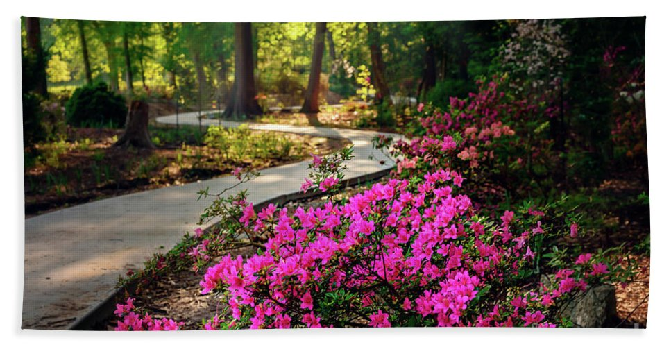 Tamyra Bath Sheet featuring the photograph Early Morning In Honor Heights Park by Tamyra Ayles