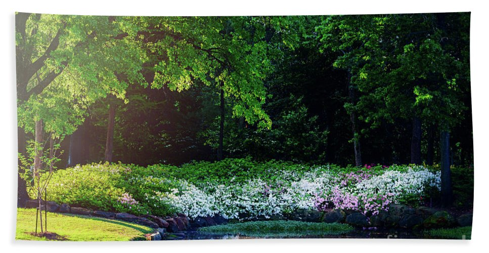 Tamyra Hand Towel featuring the photograph Early Morning Light At The Azalea Pond by Tamyra Ayles