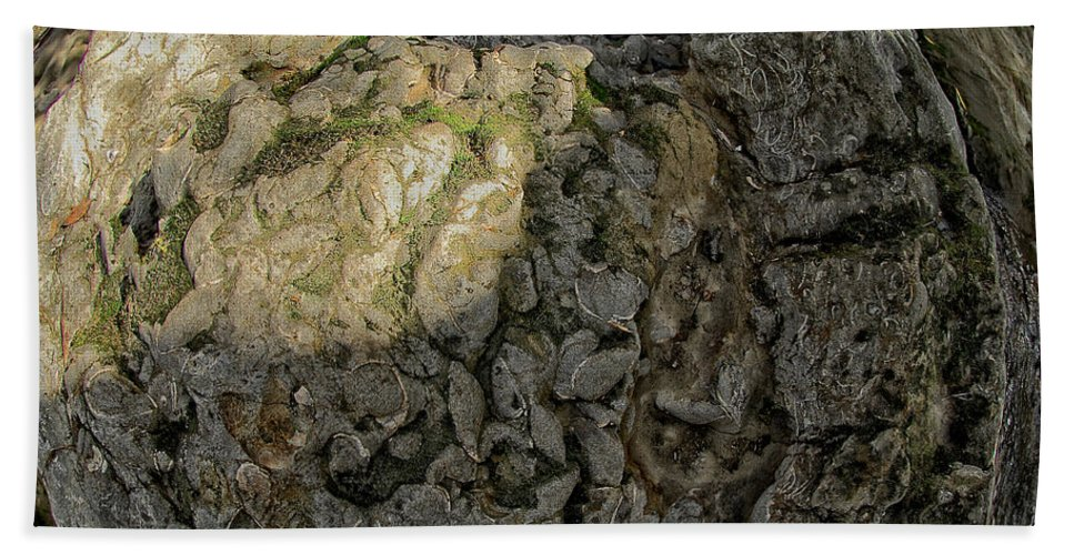 Rock Hand Towel featuring the photograph Earth's Pedestal by Donna Blackhall