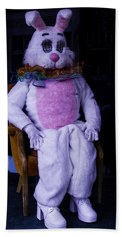 Easter Hand Towel featuring the photograph Easter Bunny Costume by Garry Gay