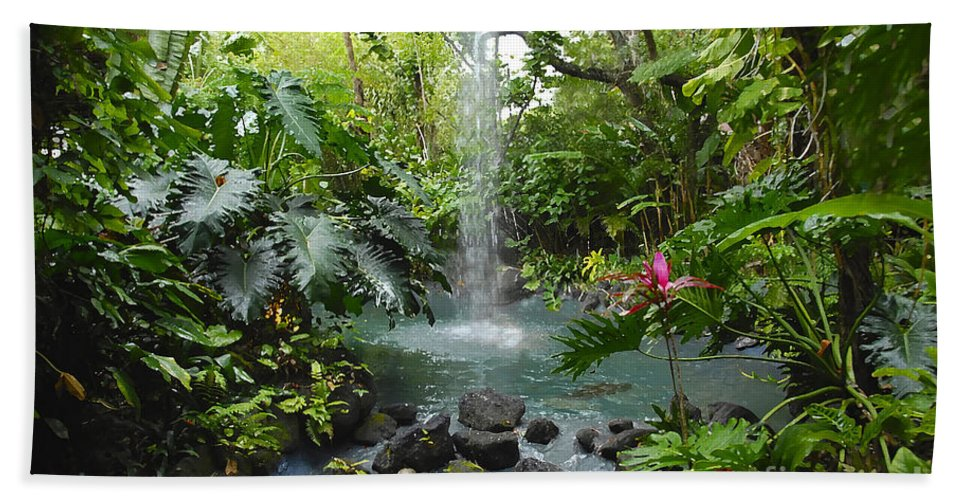 Garden Of Eden Bath Towel featuring the photograph Eden by David Lee Thompson