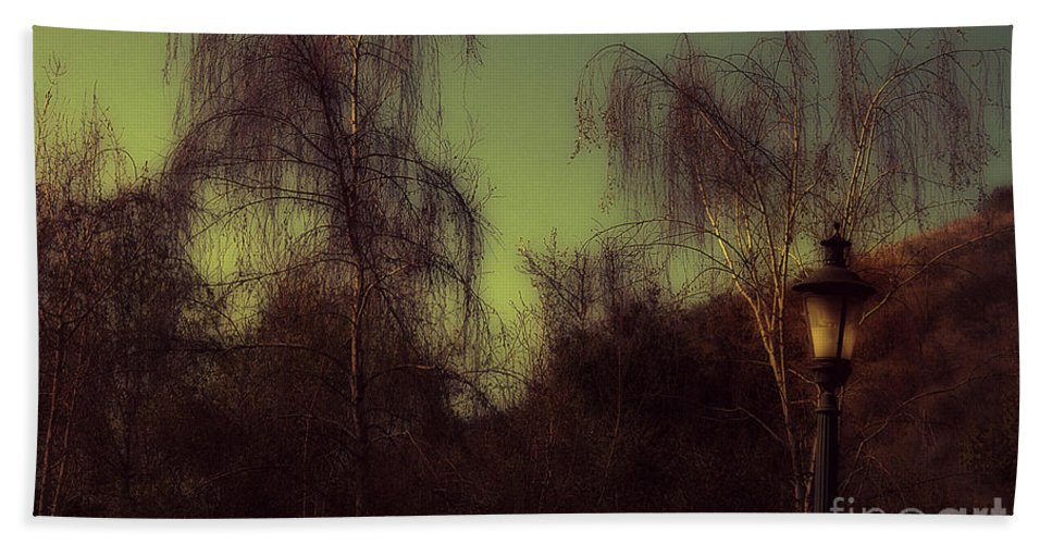 Clay Bath Towel featuring the photograph Eery Park by Clayton Bruster