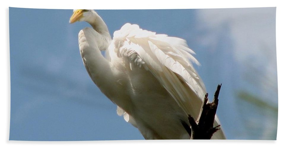 Egret Hand Towel featuring the photograph Egret 2 by J M Farris Photography