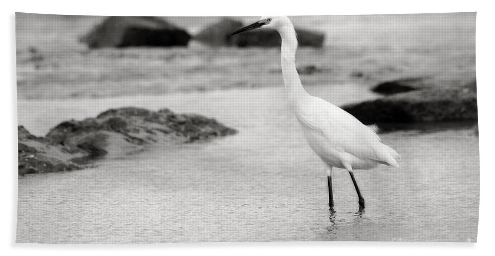 Hand Towel featuring the photograph Egret Patrolling In Black And White by Angela Rath