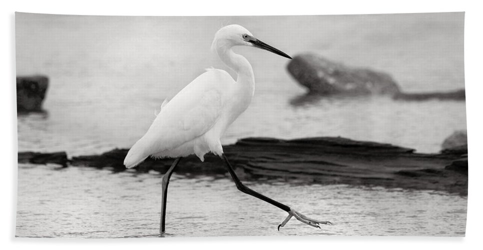 Hand Towel featuring the photograph Egret Step In Black And White by Angela Rath