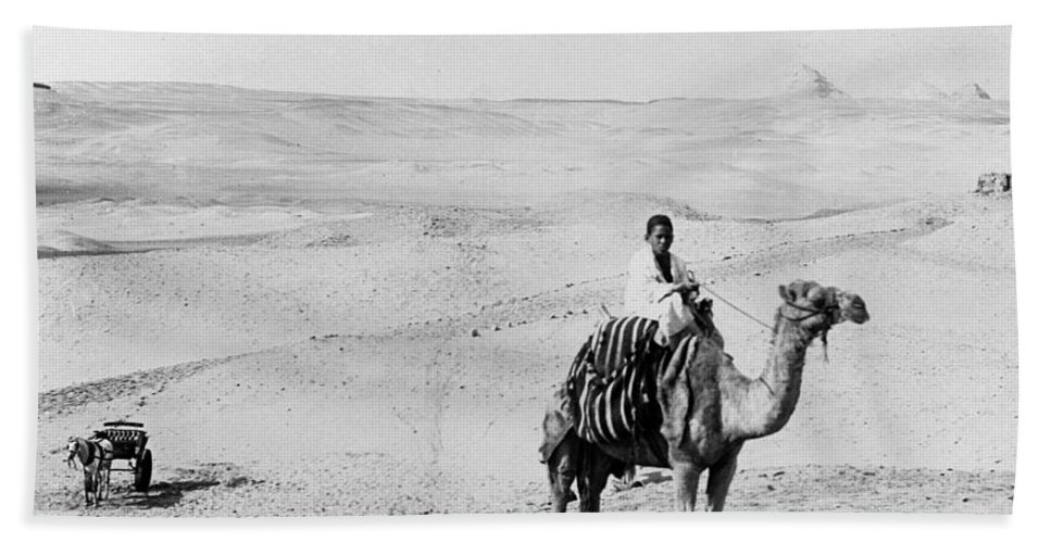 1908 Bath Sheet featuring the photograph Egypt: Boy On Camel, C1908 by Granger