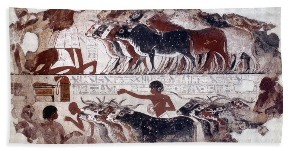 1400 B.c Bath Sheet featuring the photograph Egypt: Tomb Painting by Granger