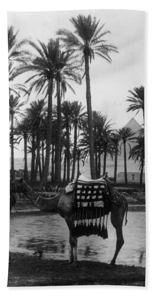 20th Century Bath Sheet featuring the photograph Egypt: Village by Granger