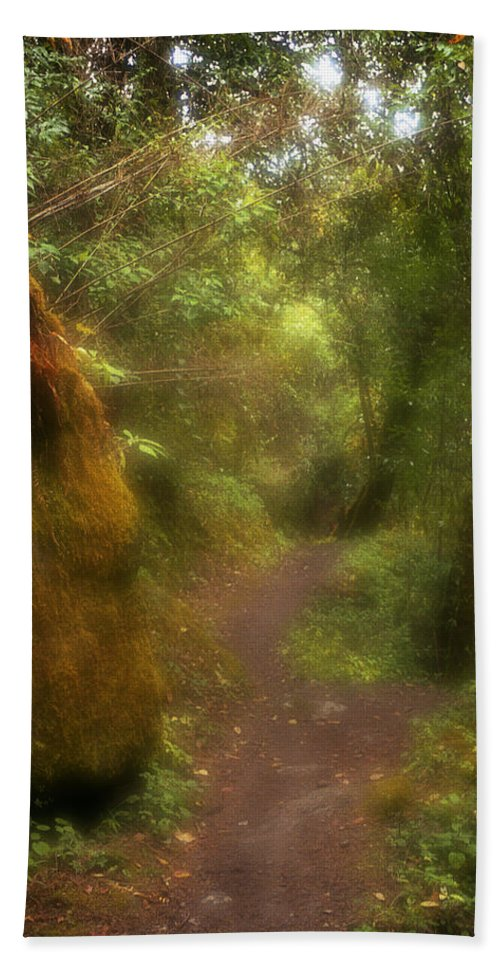Path Hand Towel featuring the photograph El Camino by Patrick Klauss