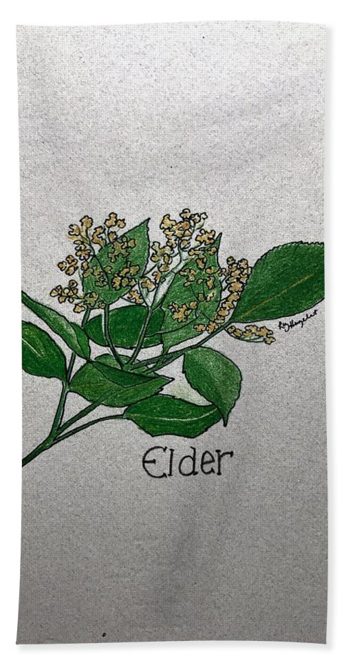 Elder Bath Sheet featuring the drawing Elder by Elizabeth Hazelet