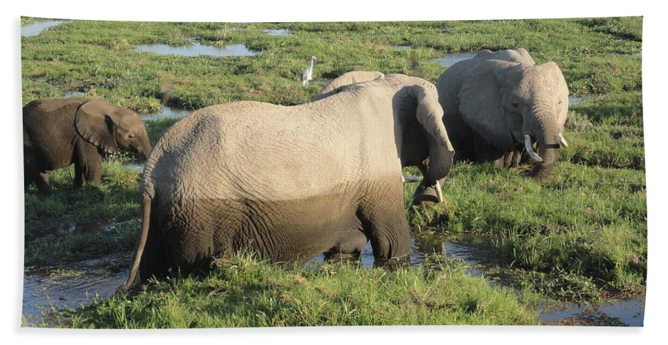 Elephant Bath Sheet featuring the photograph Elephant Family by Serah Mbii