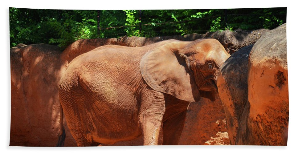 Hand Towel featuring the photograph Elephant In Red Clay by Brian Sloan