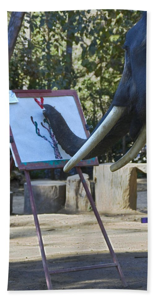 Asian Elephant Painting Picture Hand Towel featuring the photograph Elephant Painting by Sally Weigand