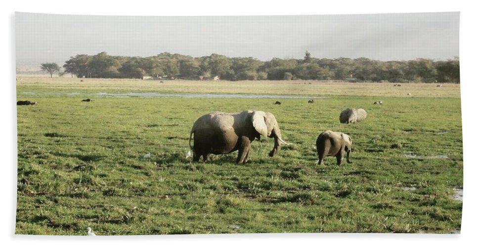 Elephants Bath Sheet featuring the photograph Elephants Grazing by Serah Mbii