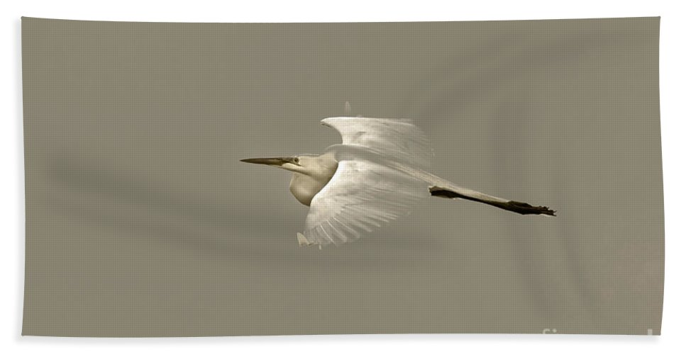 Bird Bath Sheet featuring the photograph Elusive Giant Egret by Deborah Benoit
