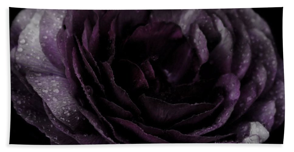 Purple Bath Sheet featuring the photograph Emily's Great Ant Thingy Flower..... by September Stone