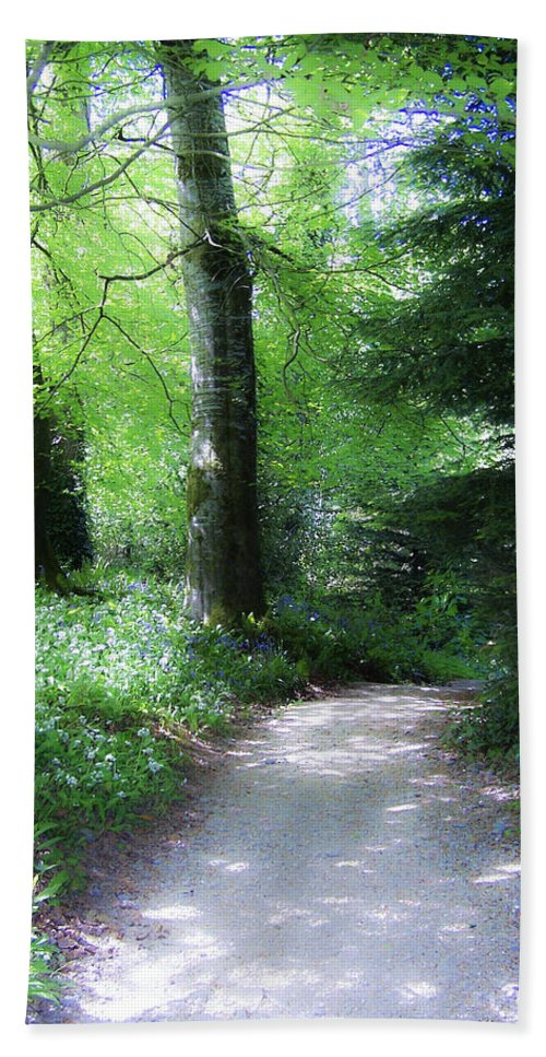 Ireland Bath Sheet featuring the photograph Enchanted Forest At Blarney Castle Ireland by Teresa Mucha