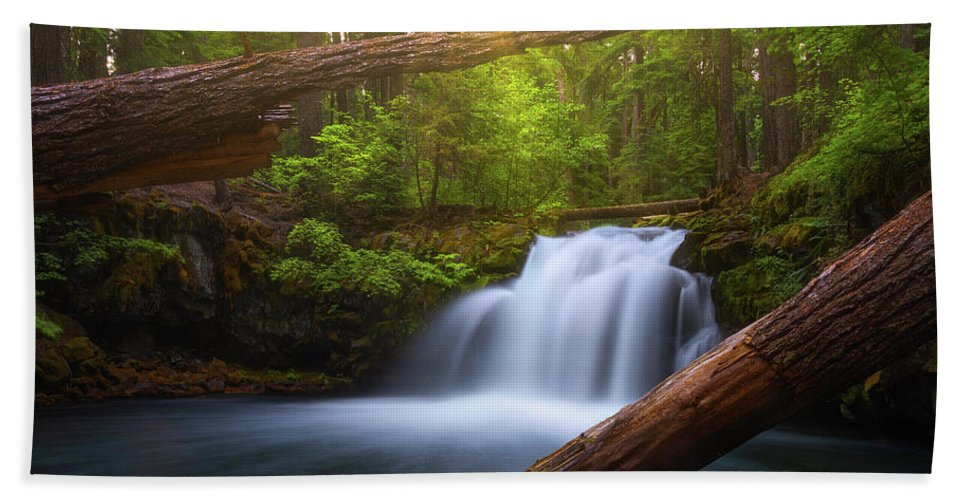 Sunlight Bath Towel featuring the photograph Enchanted Forest by Darren White