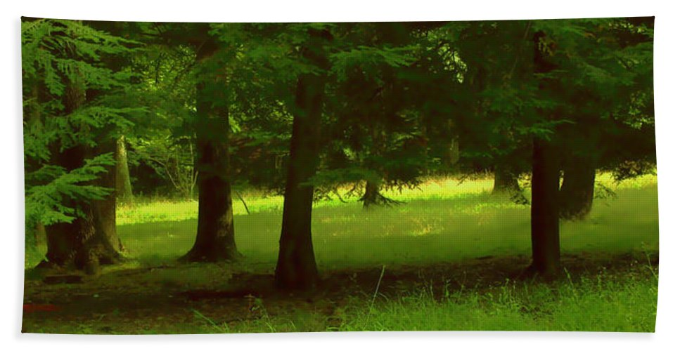 Nature Bath Towel featuring the photograph Enchanted Forest by Linda Sannuti