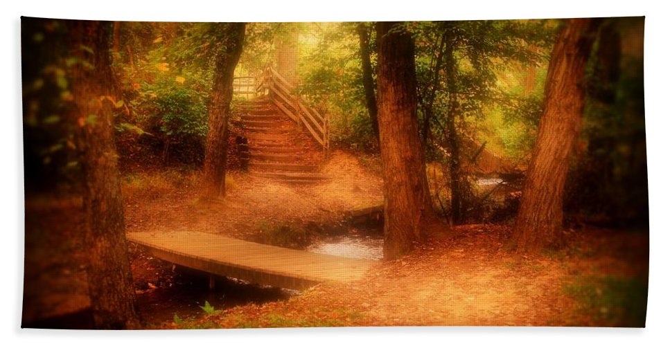 Nature Landscapes Bath Sheet featuring the photograph Enchanted Path - Allaire State Park by Angie Tirado