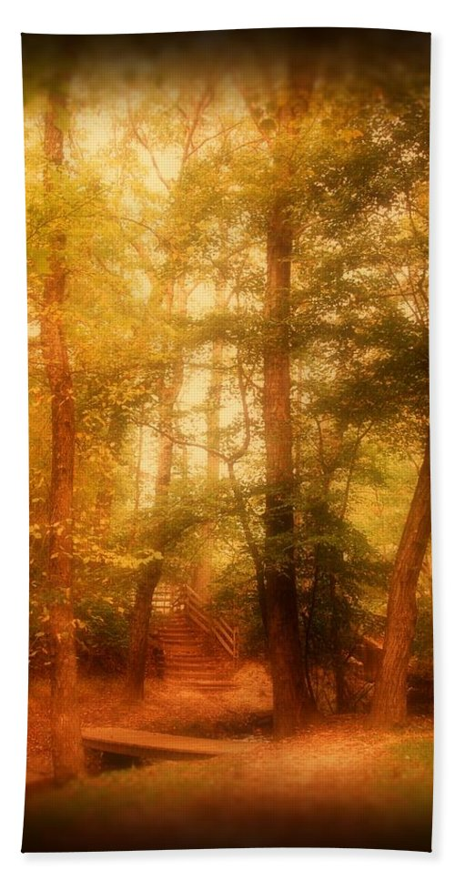 New Jersey Hand Towel featuring the photograph Enchanted Path 2 - Allaire State Park by Angie Tirado