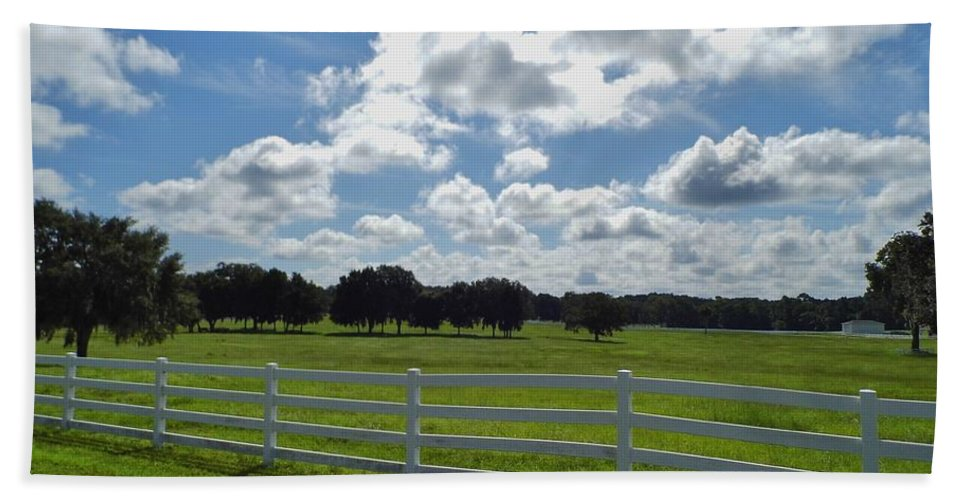Blue Sky Hand Towel featuring the photograph Endless Sky At The Farm by D Hackett