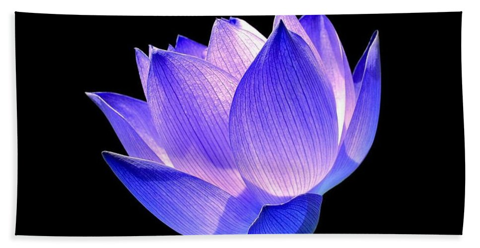 Flower Bath Towel featuring the photograph Enlightened by Jacky Gerritsen
