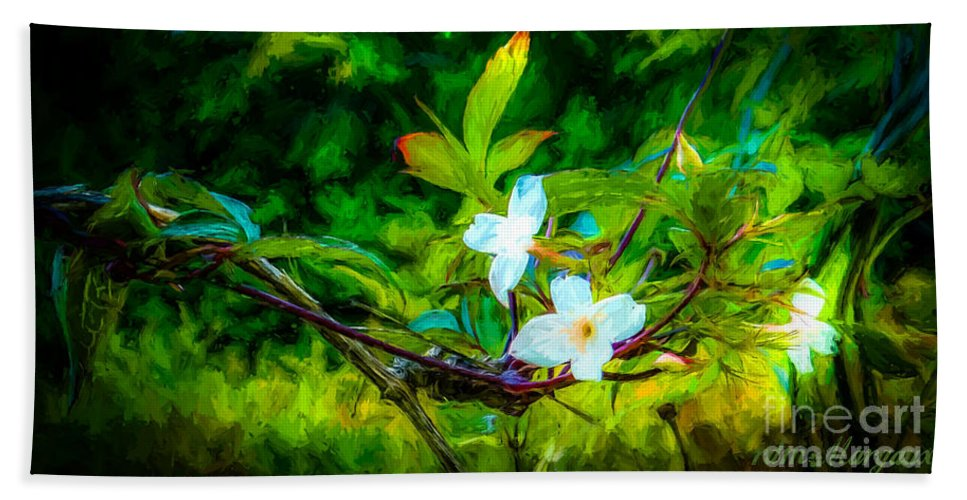 Flower Hand Towel featuring the photograph Entwined Chiaroscuro by Margaux Dreamaginations