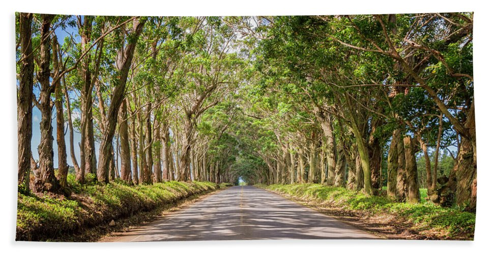 Tree Tunnel Kauai Hawaii Bath Towel featuring the photograph Eucalyptus Tree Tunnel - Kauai Hawaii by Brian Harig