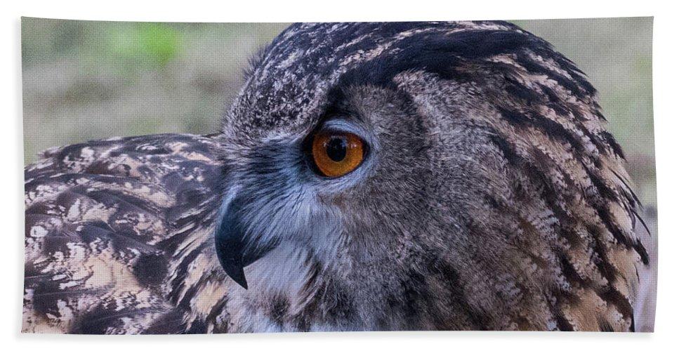 Eurasian Hand Towel featuring the photograph Eurasian Eagle Owl by Andrew Lelea