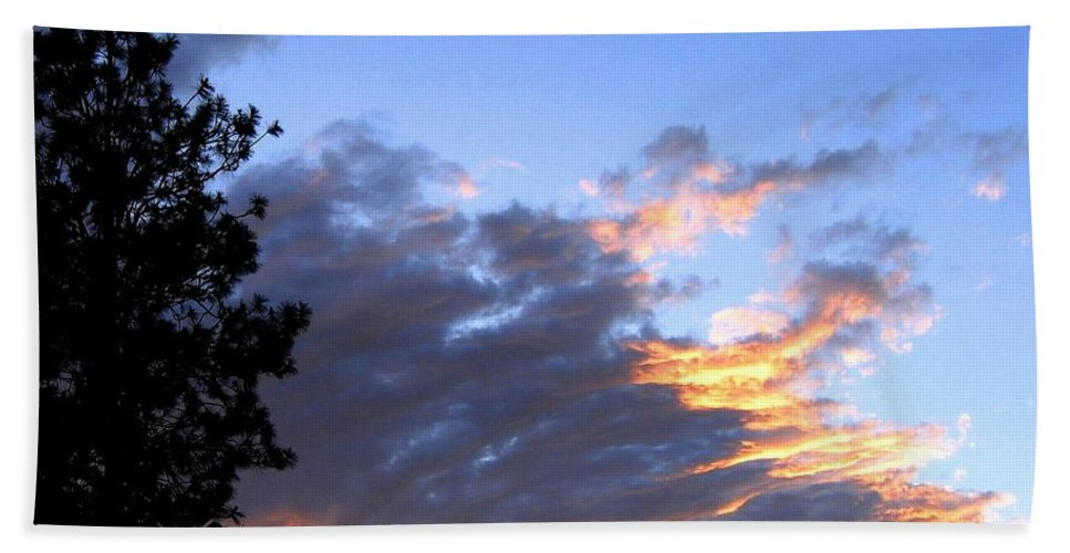 Sunset Bath Sheet featuring the photograph Evening Color by Will Borden