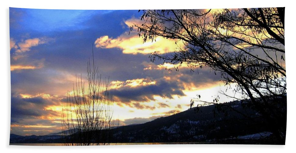 Sunset Hand Towel featuring the photograph Evening Exhibition by Will Borden