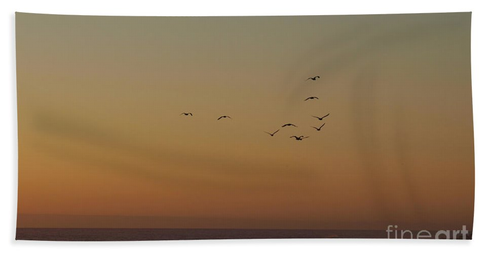 Brown Hand Towel featuring the photograph Evening Flight by Jacklyn Duryea Fraizer