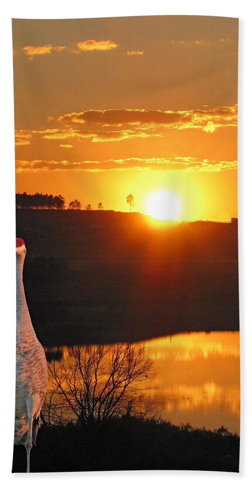 Sunset Hand Towel featuring the photograph Evening Stroll by Adele Moscaritolo