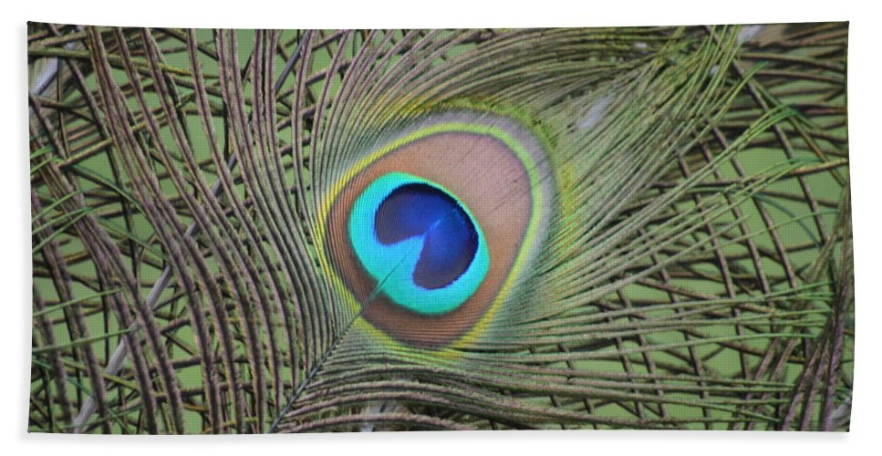 Nature Hand Towel featuring the photograph Eye 2 by Brad Kennedy
