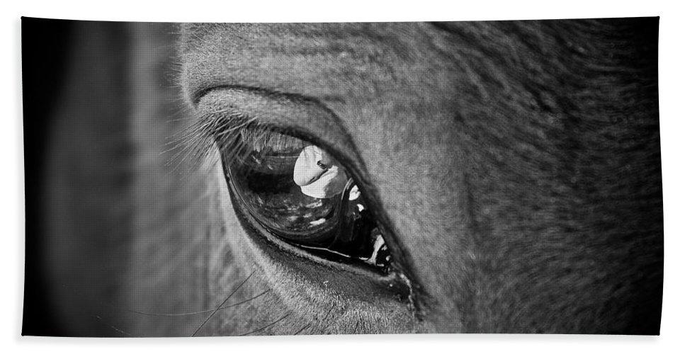 Eye Bath Sheet featuring the photograph Eye See You by Hannah Breidenbach