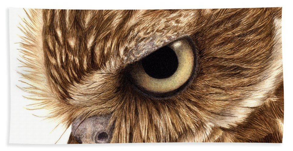 Owl. Burrowing Owl Bath Sheet featuring the painting Eyeful by Pat Erickson